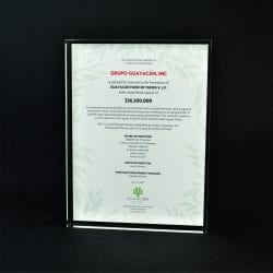 Full Color Printed Award Example 4