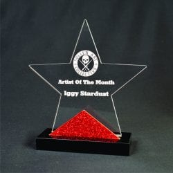 20005 Star Award with Accent