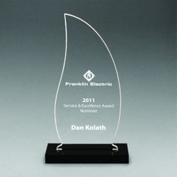 CNS Acrylic Flame Award