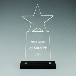 CNS Acrylic Tower Star Award