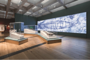 """To allow visitors the best possible viewing of these treasures, the vitrines were fabricated with PS30, or museum """"bubble free"""" seams – however, each case the museum requested had it's own set of dimensions, acrylic thicknesses, and individual specifications depending on how – and what – it was displaying."""