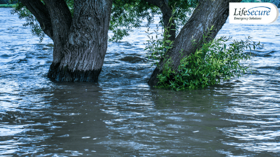 Flooding and Power Outage Safety Guide: Preparing for Spring Storms